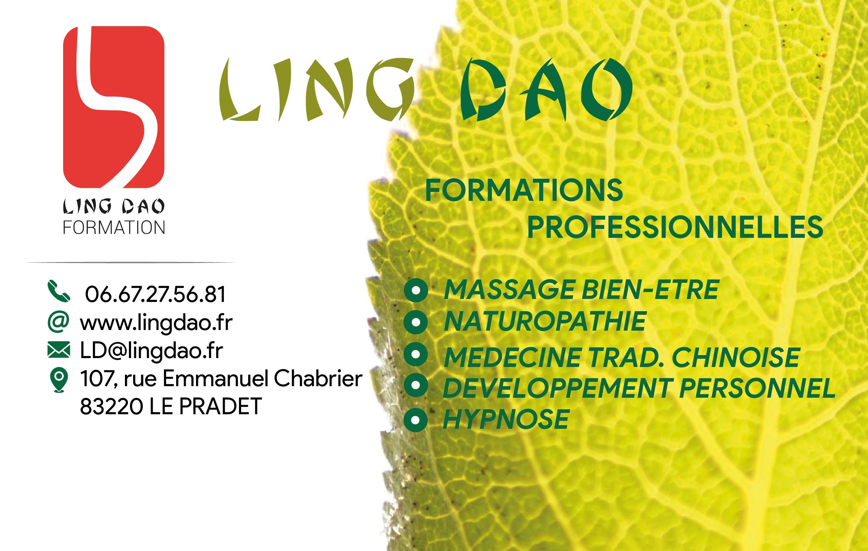 Vistaprint Essaie Carte De Visite Lingdao OK 01